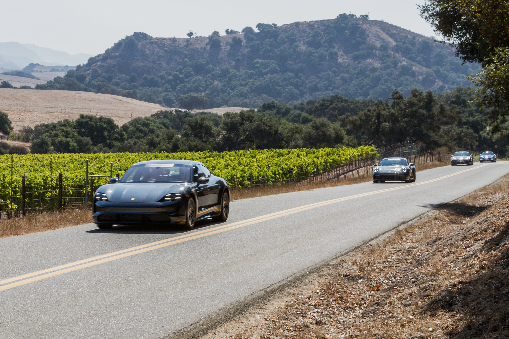 Wine Country Drive